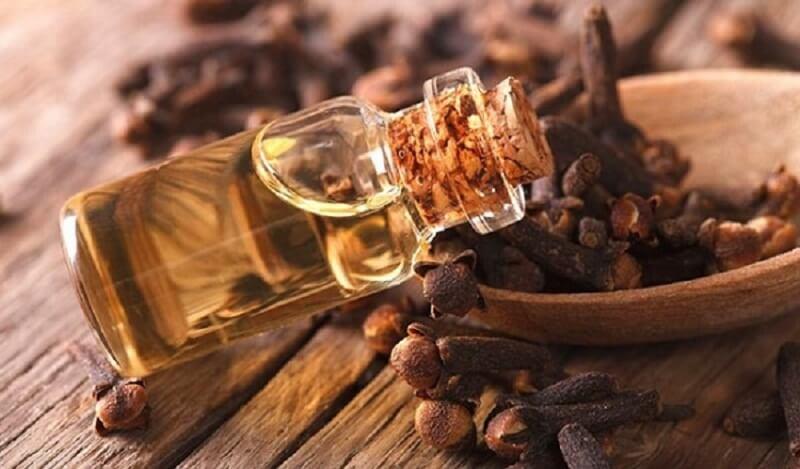 Sử dụng dầu đinh hương chữa viêm nha chu