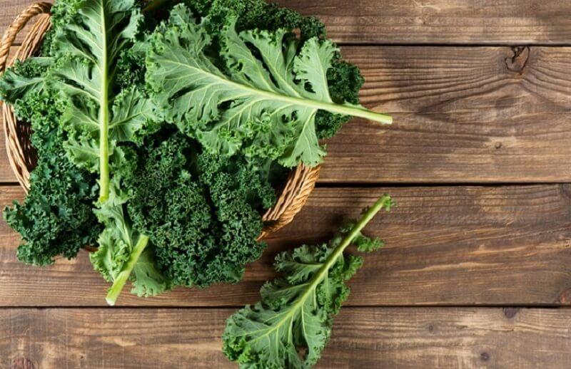 Thực phẩm giàu chất oxy hóa có tác dụng ngăn ngừa nguy cơ nhiễm trùng