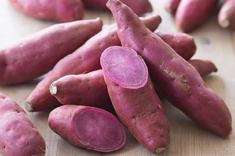 Thực phẩm giàu carotenoid có tác dụng duy trì hệ thống miễn dịch