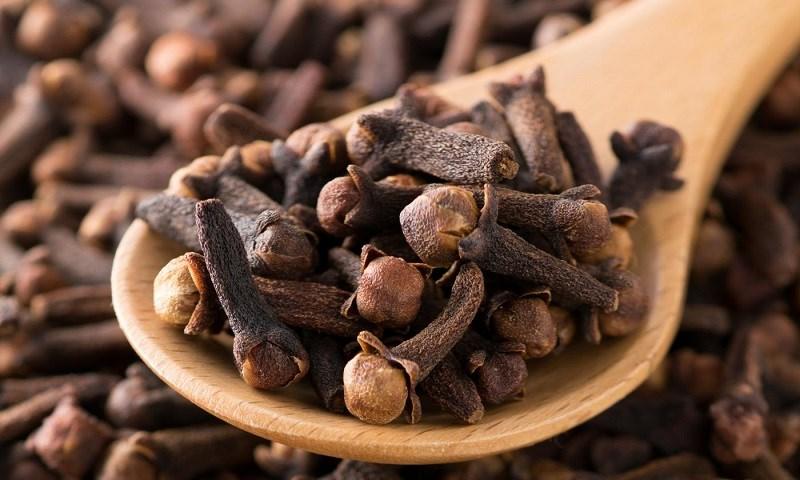 Đinh hương có tác dụng rất tốt trong giảm ê buốt chân răng