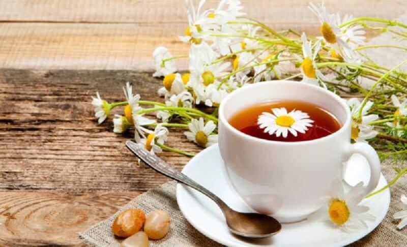 Hoa cúc có chứa nhiều khoáng chất, vitamin tốt cho sức khỏe