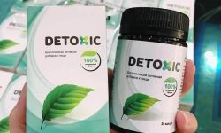Các thành phần tự nhiên của Detoxic đem lại rất nhiều lợi ích cho người dùng